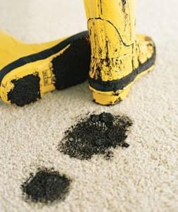 manchas alfombra