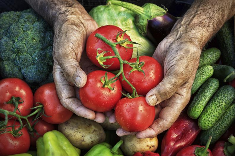 Seguro no conocías estos 10 datos curiosos sobre el tomate